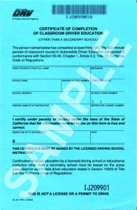 Sample DMV Completion Form DL387